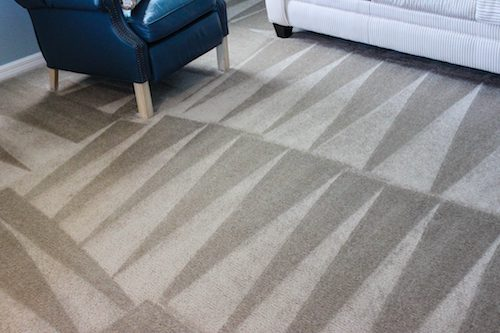 Professional Carpet Cleaning in Orlando, FL