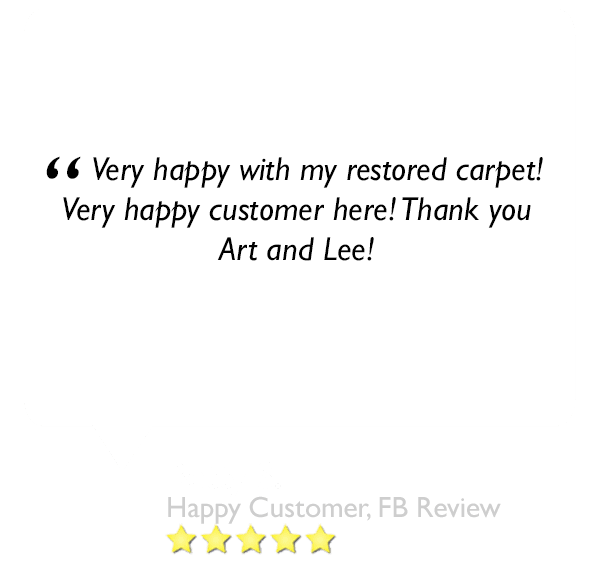 This is a 5 star review left about our carpet cleaning company in orlando