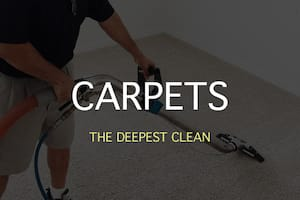 carpet cleaning orlando