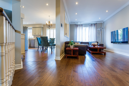 Hardwood Floor Cleaning and Rug Cleaning Experts in Orlando
